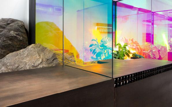 Iridiscence in design at office - Aesop Wynwood